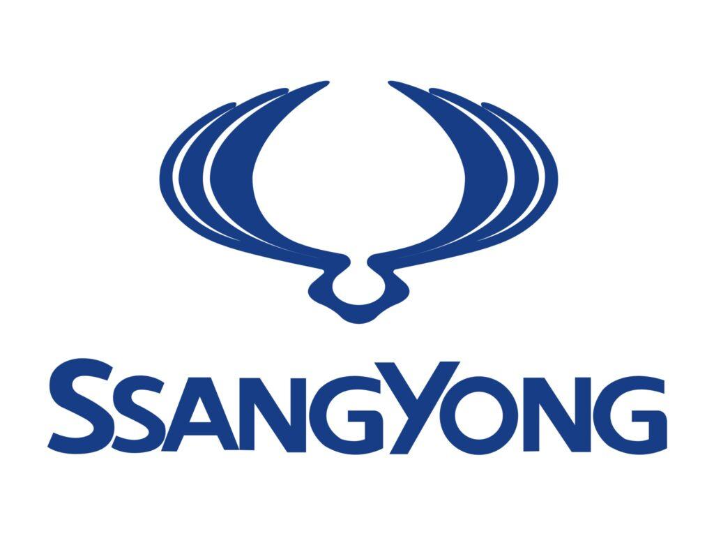 Скрутить пробег Санг Йонг